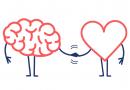 Dove nascono le nostre emozioni? Il Dott. Andrea Di Ruvo ce lo spiega!